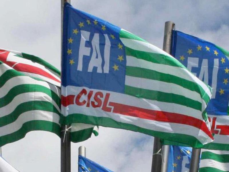 'Fai Bella l'Italia', in provincia di Foggia l'invito a ...
